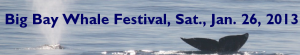 San Diego Big Bay Whale Festival Events