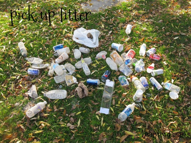 24-pick up litter -livininsd.com
