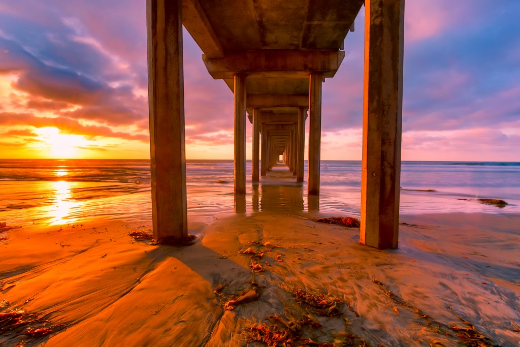 san-diego-county-calendar-of-events-rosemary-joles-realtor-the-joles-group-free-things-to-do-in-san-diego-10 Scripps Pier