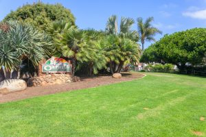 123 Jasper Street, Encinitas, California, Rosemary Joles, Realtor, The Joles Group, Bennion Deville Homes (15)